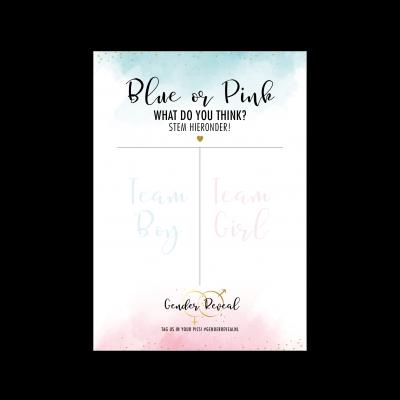 Geschlecht offenbaren – blau oder rosa Plakat